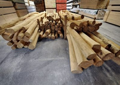 Robinienstämme in verschiedenen Durchmessern und Längen sofort verfügbar